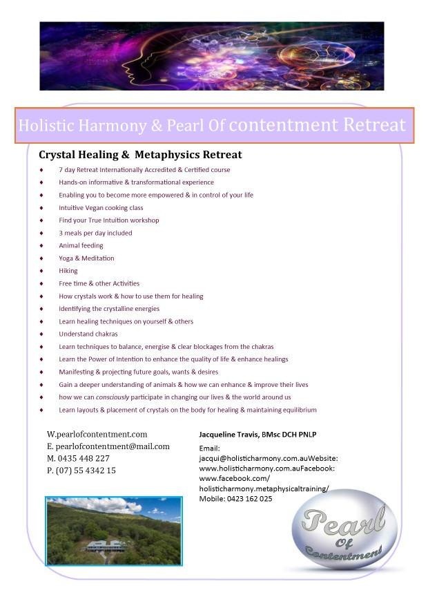 holistic harmony retreat flyer