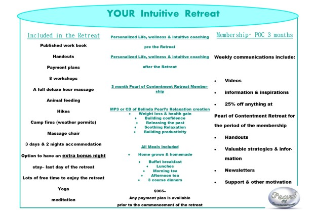 YOUR intuitive retreat flyer back
